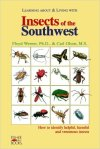 insects-southwest